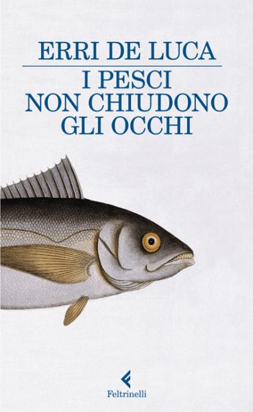 i-pesci-non-chiudono-gli-occhi-e1317809449180